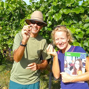 Lifestyle during the home tuition course German and wine